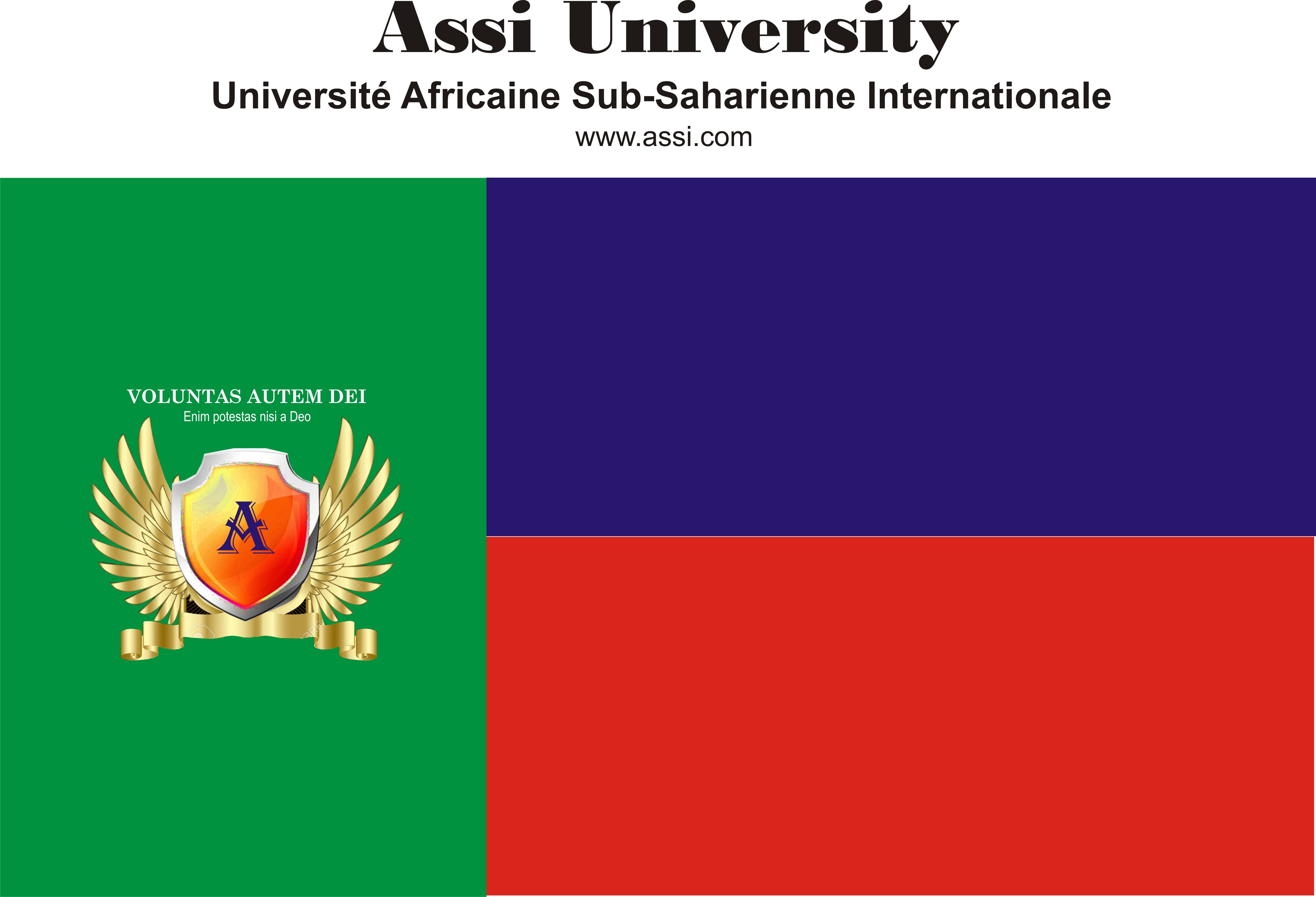 Courses and Departments – Assi University